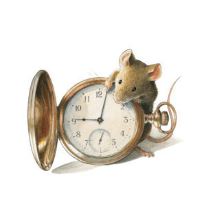 Mäuseabenteuer
